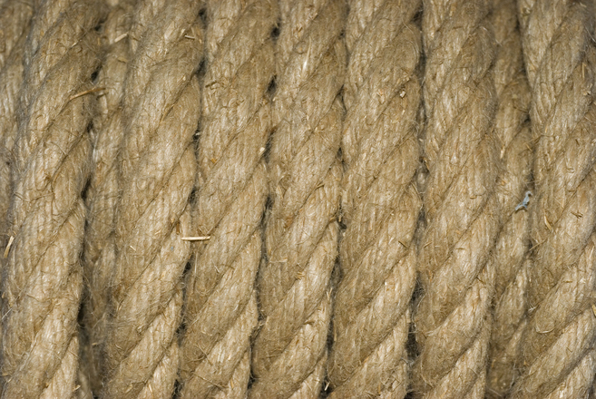 Line Texture Photo : Free lines texture stock photo freeimages