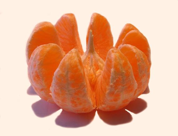 """Tangerine """"flower"""