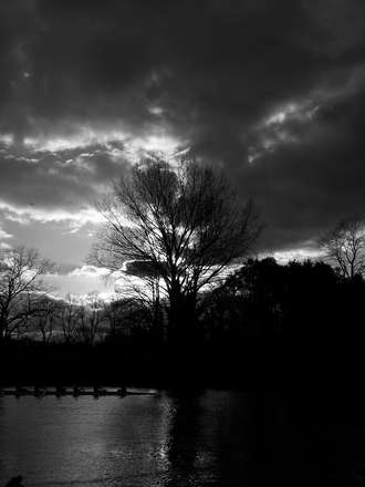 Evening row