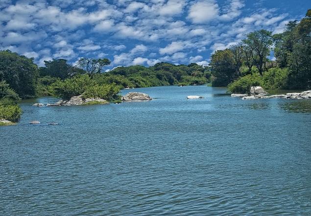 Salgado's River