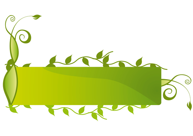 Free Eco Floral Banner 3 Stock Photo Freeimages Com