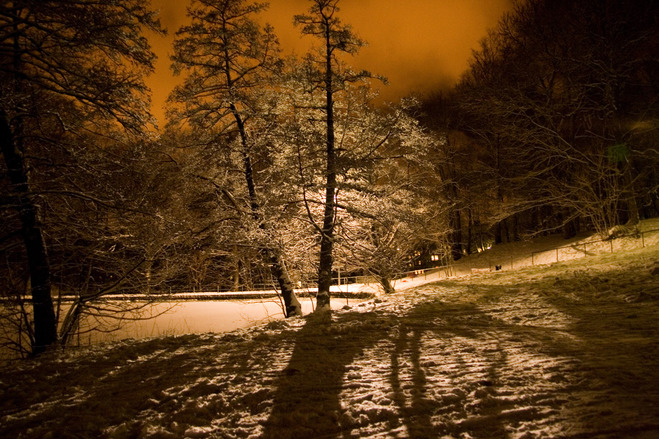 Nightshot in winter