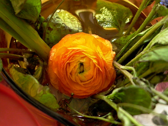 greens for mothers day 3
