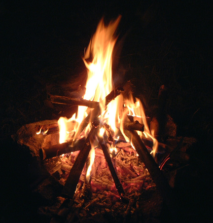 survival fire