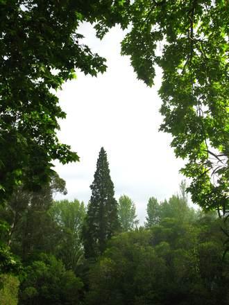 Natural Framing In Photography - iwate-kokyo