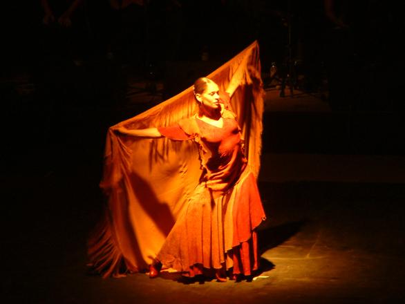 Flamengo dancer