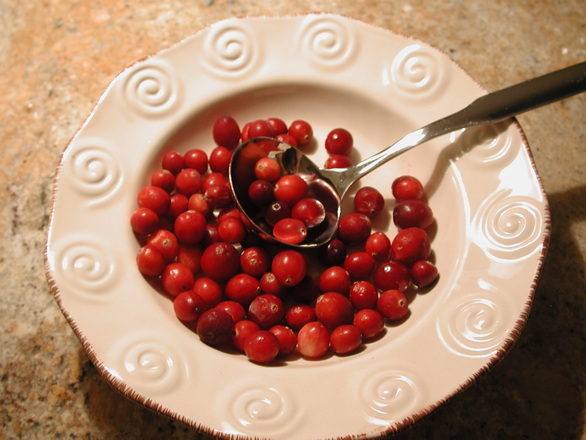 Holiday Cranberries 2 2