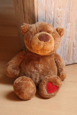 teddy, oh