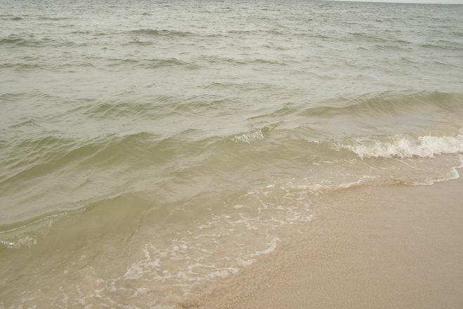 along the beach 5