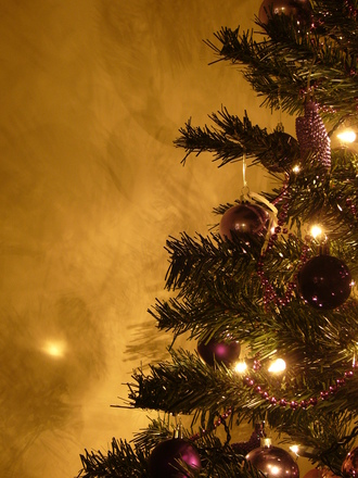Graham's Christmas Tree 9