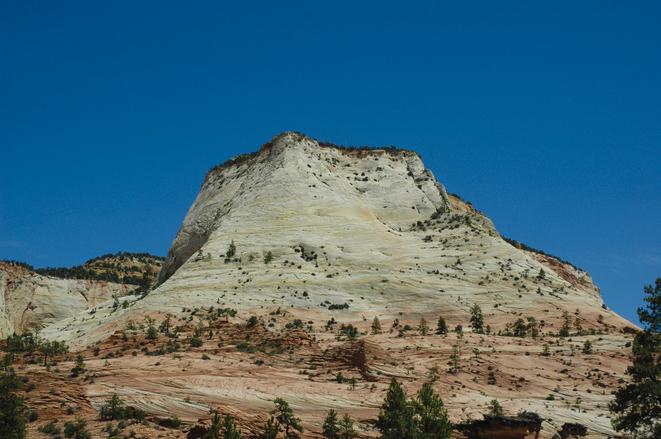 Zion National Park 4