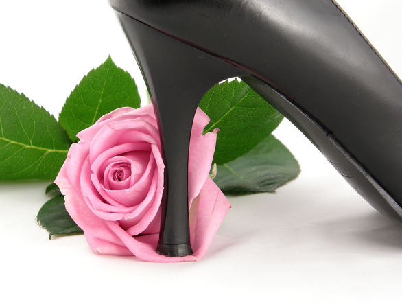 pink rose and stilettoes