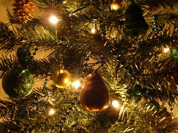 Graham's Christmas Tree 12