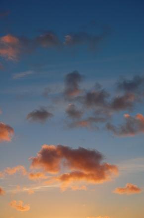 Vanilla Sky 1