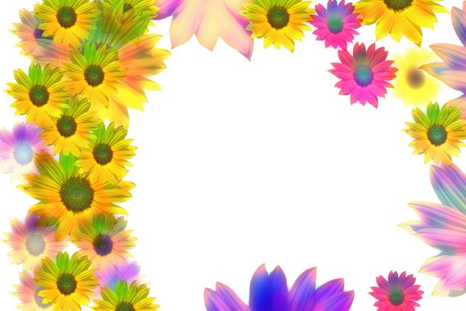 Sunflowers border, free photo files, #1171772 - FreeImages.com