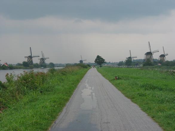 22 windmills