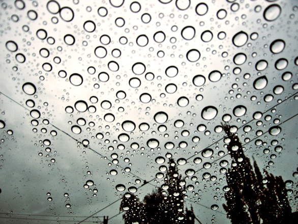 Rain drops on car window