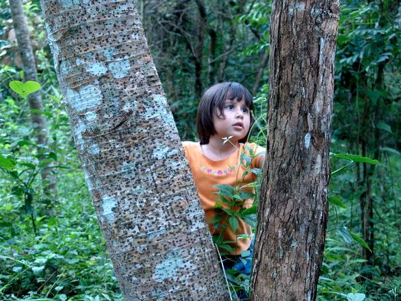 знакомства в лесу-чя3