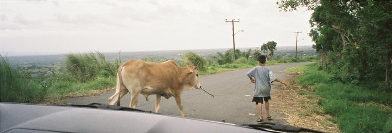 Philippine scenes