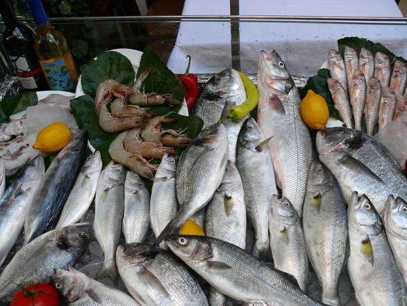 Kalasta saa rasvahappoja