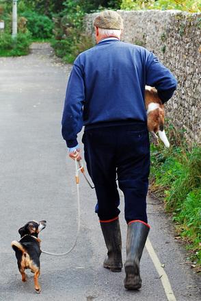 Koiran ulkoilutus