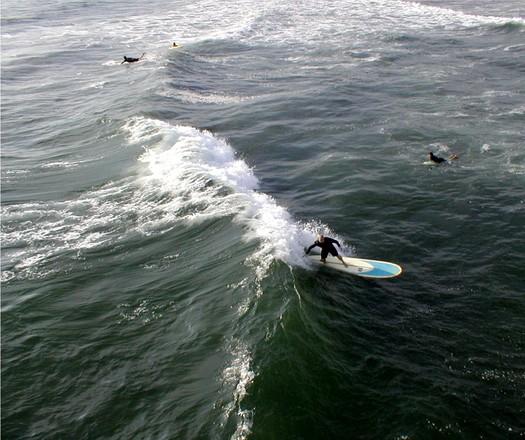 Surffaaja