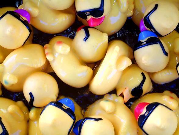 duck pond crowd