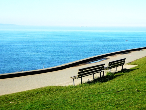 benches by the sea
