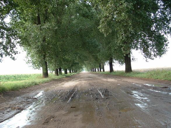drogi betonowe