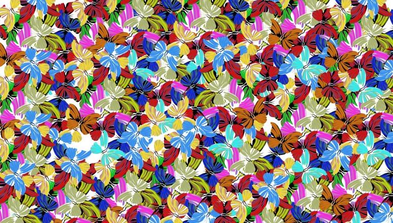ButterflyColor