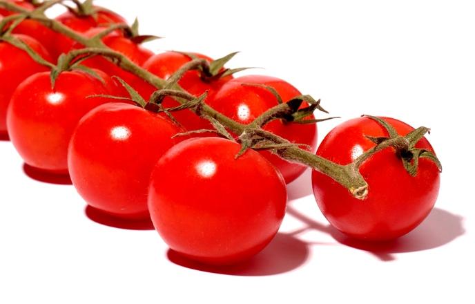 Tomatoes on stalk