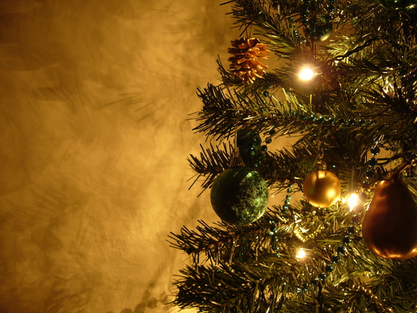 Graham's Christmas Tree 11