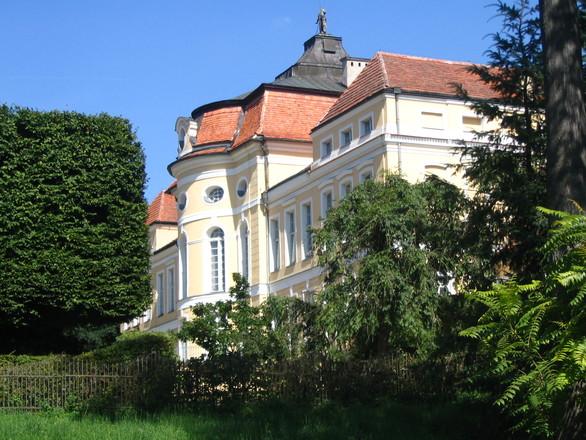 Rogalin Palace 2