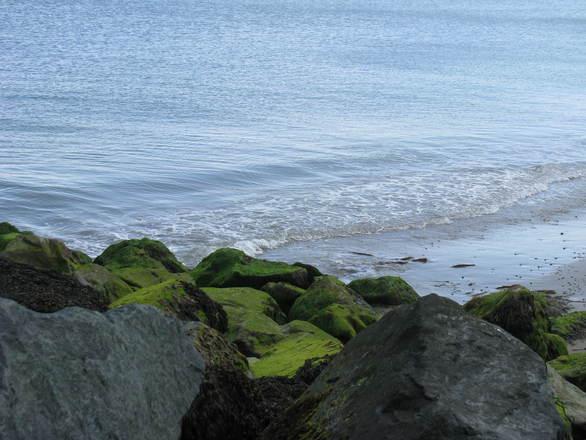 Bray Coast 4