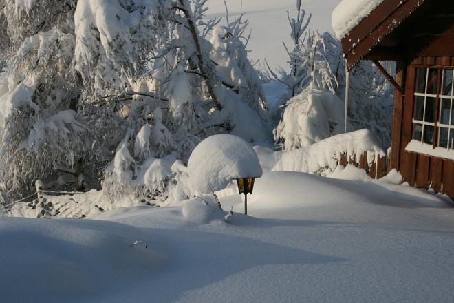 Winter Lamp 2