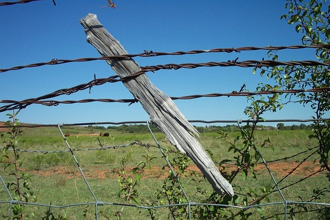 Free Barb Wire Fence Stock Photo