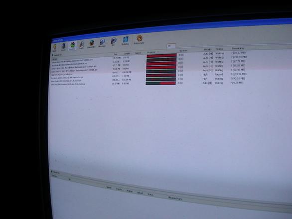 p2p - file sharing