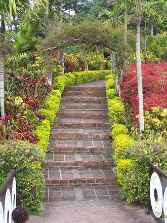 okinawa botanical garden