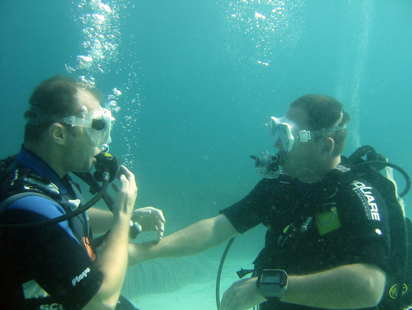 Mallorca Divers - Hippocampes Divers
