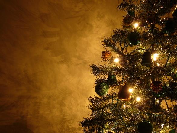 Graham's Christmas Tree 13