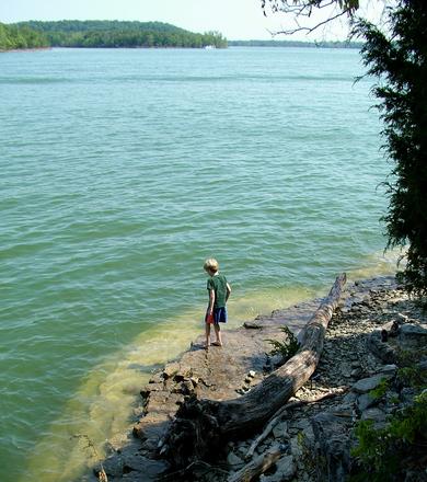 Girl Lake Swim Water Wet Rc