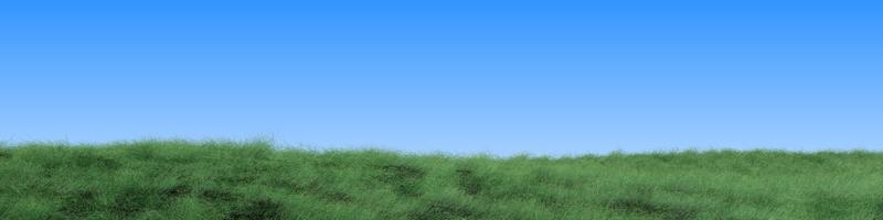 Grass & Sky 1