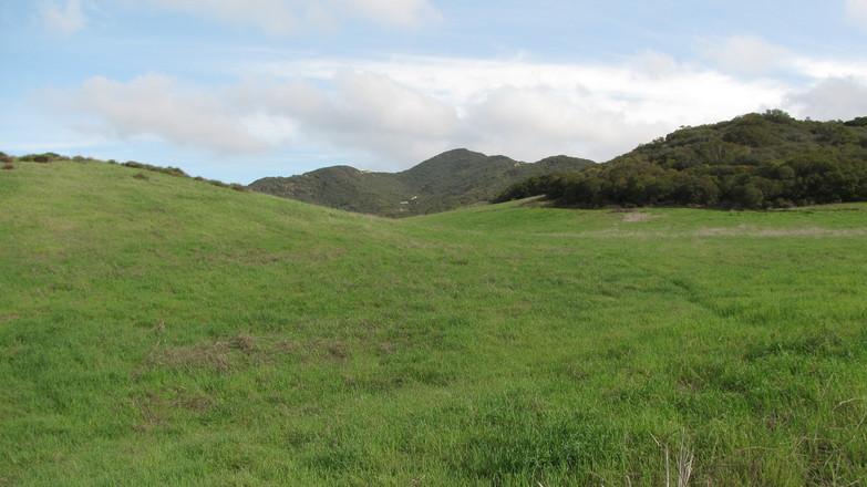 Satwiwa Meadow