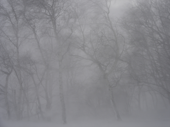 Snowstorm 1