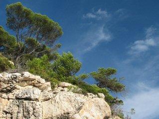cliff,tree,sky,blue