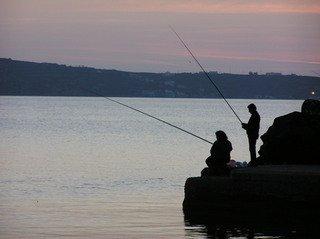 Fishing,fishing,outdoors,water