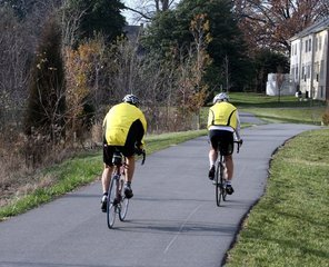 Cyclists,Bicycle,