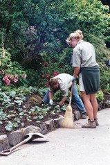 jardiniers,gardeners,work,planting