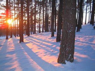 winter,scene,snow,sunset
