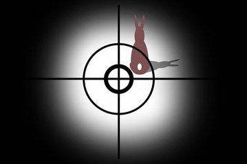 Aim,shot,circuit,circles